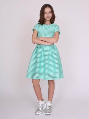 Платье D17.015